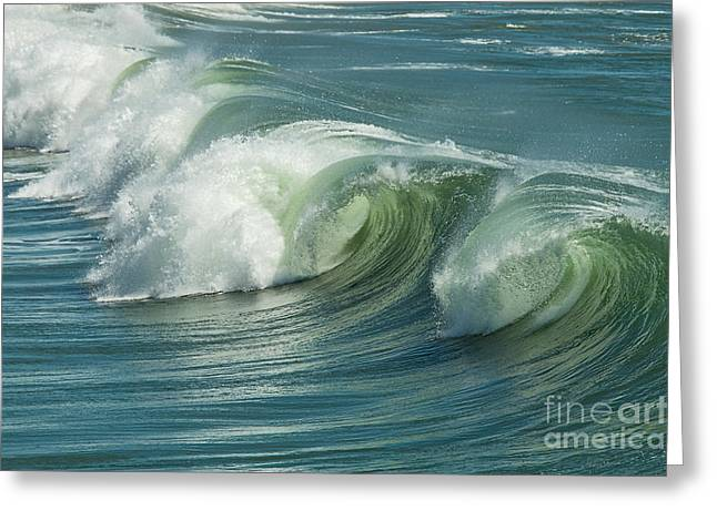 Wave Curls Greeting Card by Ana V Ramirez