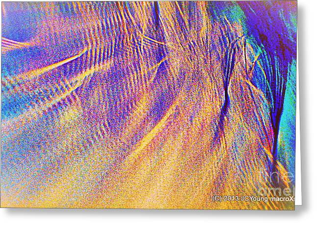 Wave Greeting Card by JCYoung MacroXscape