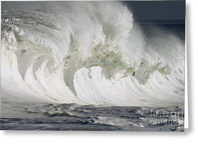 Wave Whitewash Greeting Card by Vince Cavataio