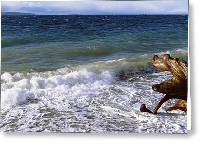 Waves And Driftwood On The Beach Greeting Card by Panoramic Images