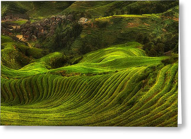 Waves Of Rice - The Dragon's Backbone Greeting Card