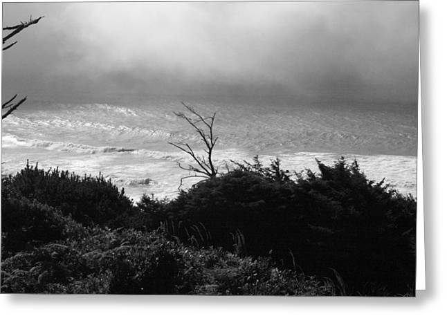 Greeting Card featuring the photograph Waves Upon The Land by Tarey Potter