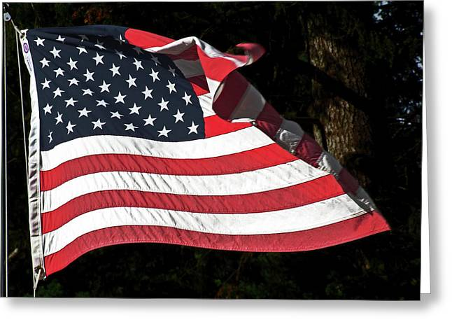 Waving Flag Greeting Card by Ron Roberts