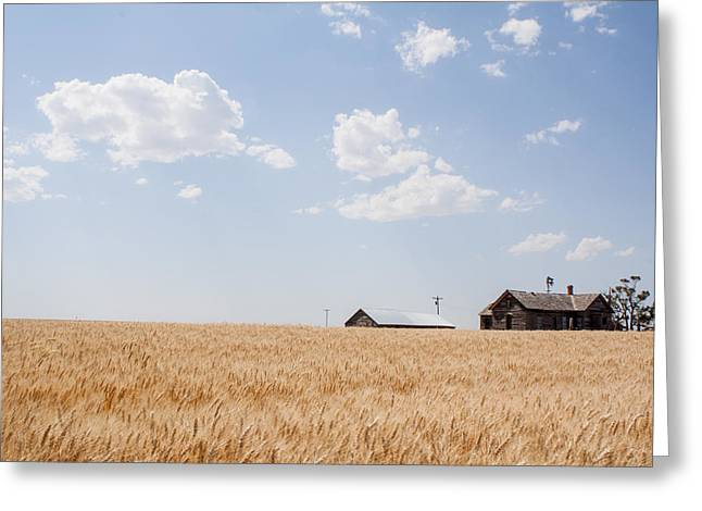 Waving Wheat Homestead Greeting Card