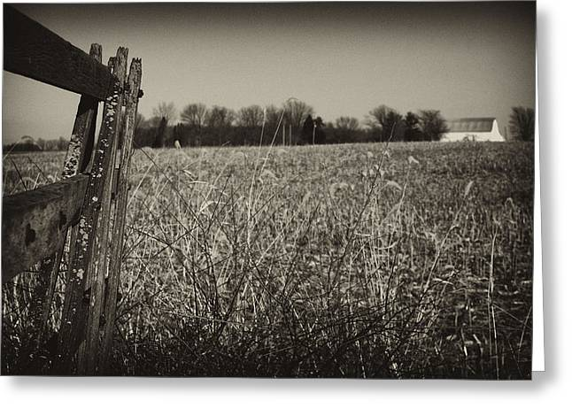 Way Out Here Greeting Card by Off The Beaten Path Photography - Andrew Alexander