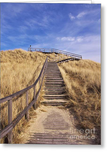 Way To Dune Greeting Card by Angela Doelling AD DESIGN Photo and PhotoArt