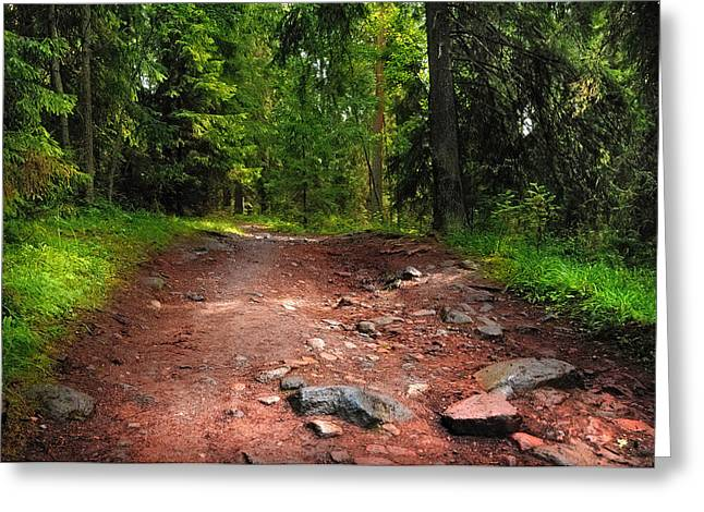 Way To The Shrine. Valaam. Northern Russia Greeting Card