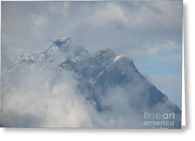 Greeting Card featuring the photograph Way Up Here by Greg Patzer