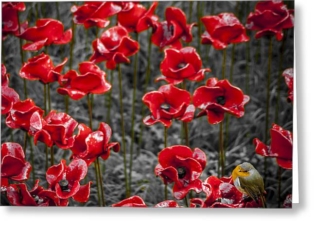 We Will Remember Them Greeting Card by S J Bryant