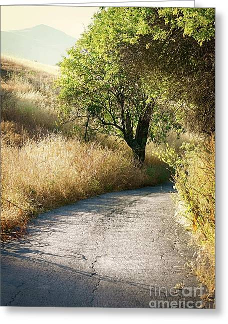 Greeting Card featuring the photograph We Will Walk This Path Together by Ellen Cotton