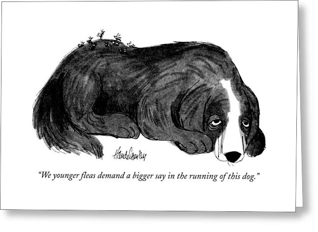 We Younger Fleas Demand A Bigger Say Greeting Card