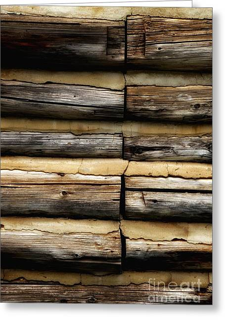 Weathered And Worn Greeting Card by Newel Hunter