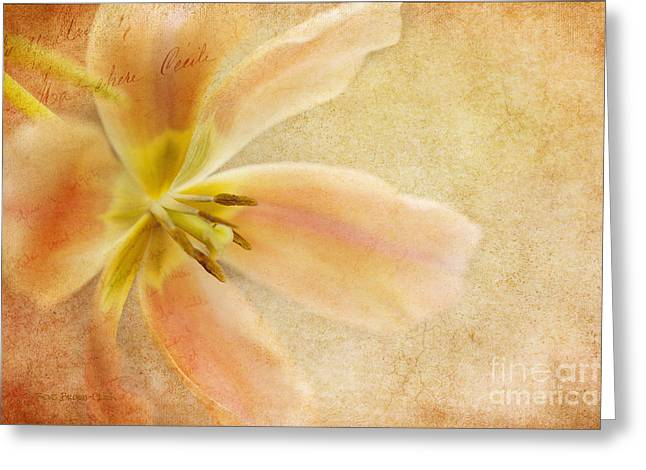 Weathered Beauty - Of  Days Gone By Greeting Card by Beve Brown-Clark Photography