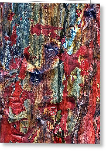 Weathered Greeting Card by Marcia Colelli