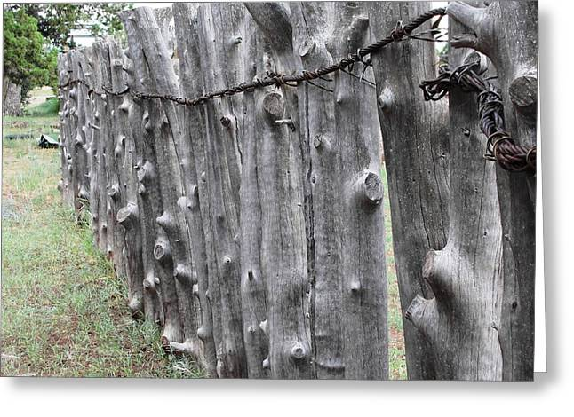 Greeting Card featuring the photograph Weathered by Natalie Ortiz