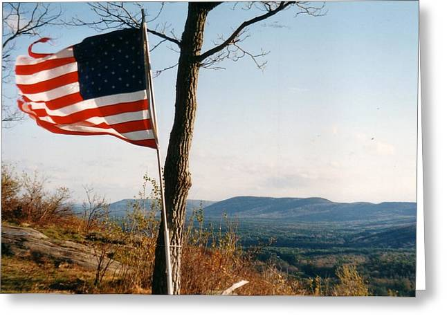 Weathered Stars And Stripes Greeting Card by David Fiske