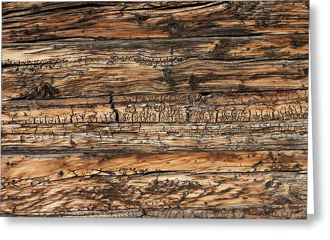 Weathered Wood 5 Greeting Card by Charles Lupica