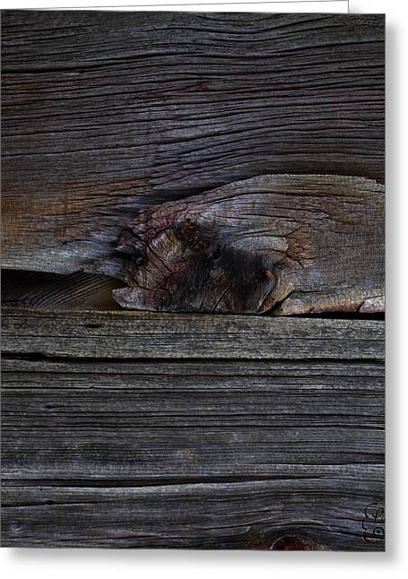 Weathered Wood - Dusk Greeting Card by Patricia Kay