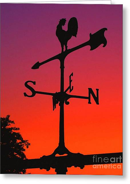 Weathervane At Sunset Greeting Card by Nick Zelinsky
