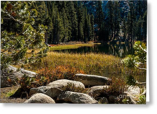 Weaver Lake -1-7682 Greeting Card