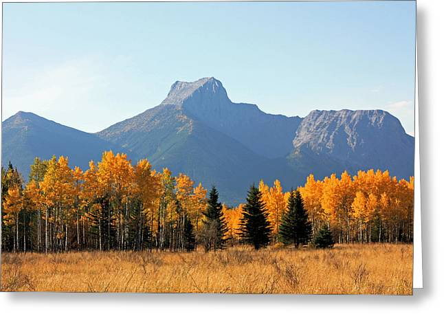 Wedge Mountain And Aspen Greeting Card
