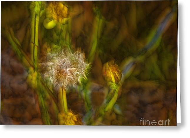 Greeting Card featuring the photograph Weed Art by Shirley Mangini