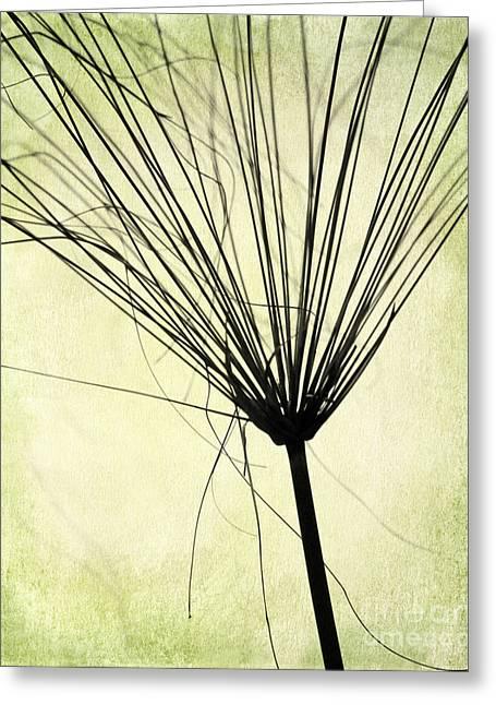 Weed In Green Greeting Card by Sabrina L Ryan