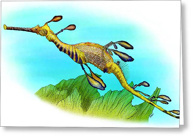 Weedy Sea Dragon Greeting Card by Roger Hall