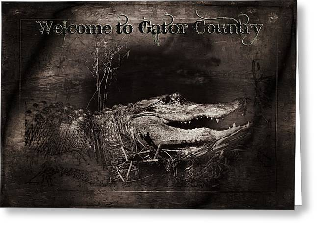 Welcome To Gator Country Greeting Card by Mark Andrew Thomas