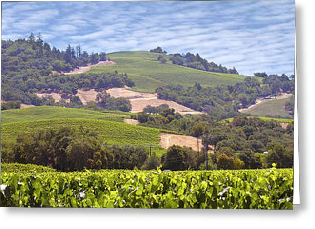 Welcome To Wine Country Greeting Card by Mike McGlothlen
