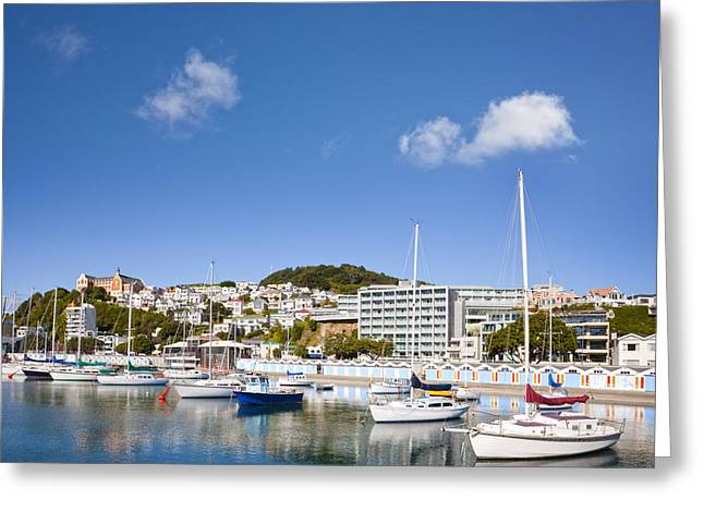 Wellington Oriental Bay Marina New Zealand Greeting Card