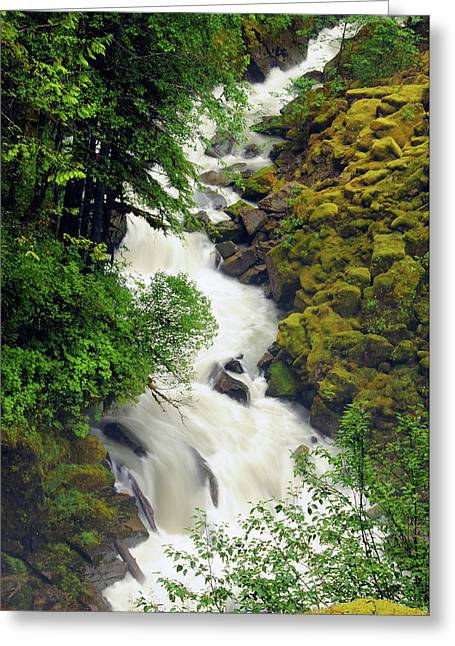 Wells Creek, Mount Baker-snoqualmie Greeting Card