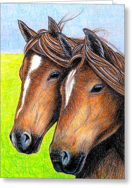 Welsh Mountain Ponies Greeting Card