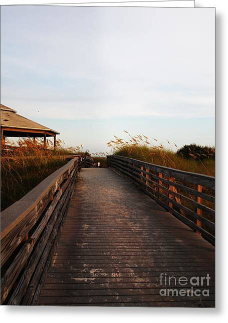 Went For A Stroll On The Boardwalk Greeting Card by Meghan Pettis