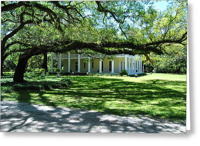 Wesley House And The Oak Greeting Card by Michele Kaiser
