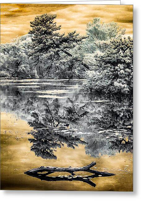 Greeting Card featuring the photograph West Brook Pond by Steve Zimic