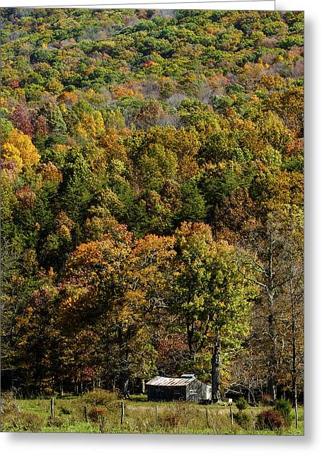 Greeting Card featuring the photograph West Virginia Color by David Lester