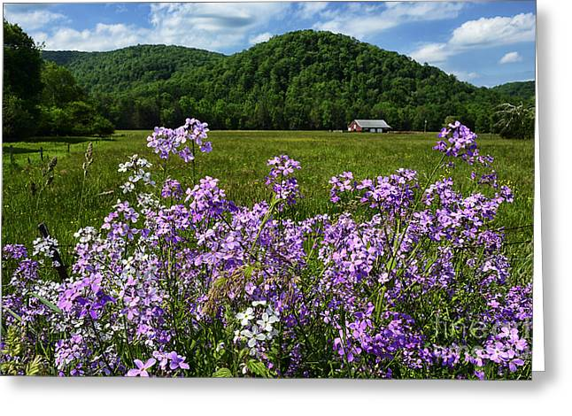West Virginia Serenity  Greeting Card by Thomas R Fletcher