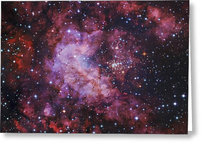 Westerlund 2 Gum 29 Star Cluster Greeting Card by Robert Gendler