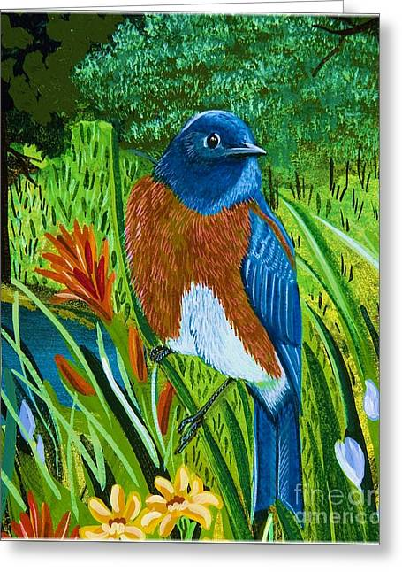 Western Bluebird Greeting Card by Jennifer Lake