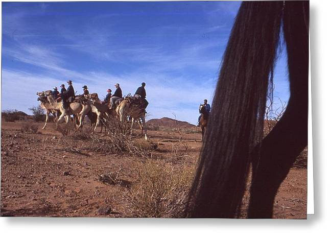 Western Cape Desert South Africa 1996 Greeting Card by Rolf Ashby