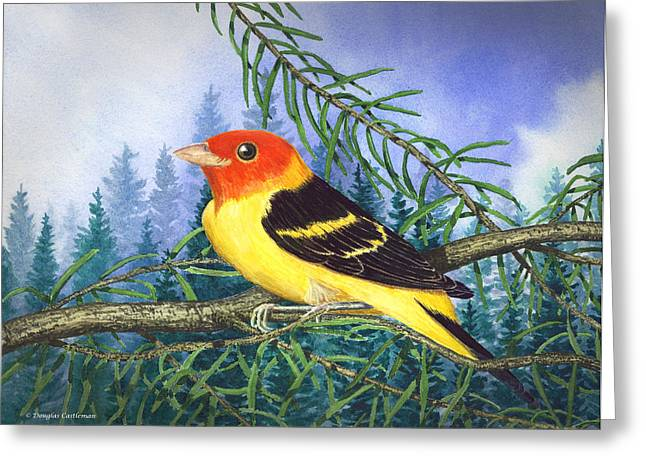 Western Tanager In Yosemite Greeting Card