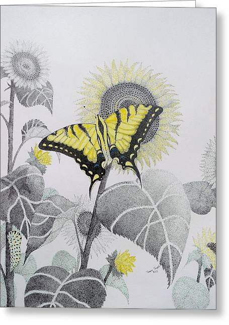 Western Tiger Swallowtail And Sunflower Greeting Card by Tammie Temple