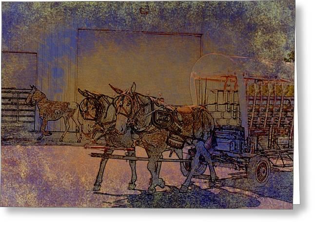 Westmoreland Mule Day Greeting Card by EricaMaxine  Price