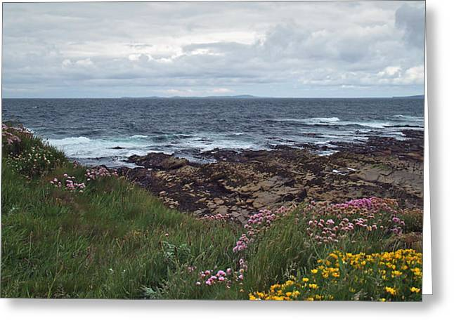 Westray Firth Greeting Card by Steve Watson