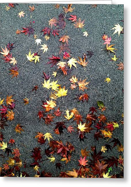 Wet Autumn Greeting Card by Lora Lee Chapman