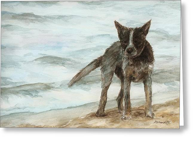 Wet Dog - Cattle Dog Greeting Card