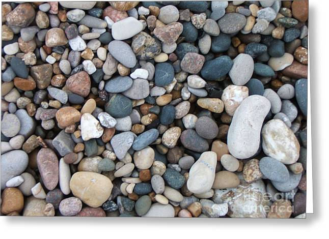 Wet Pebbles Greeting Card by Margaret McDermott