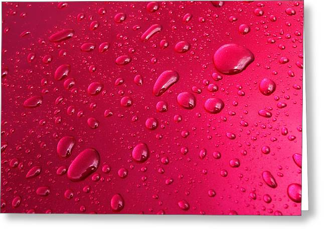 Wet Pink Greeting Card by Olivier Le Queinec