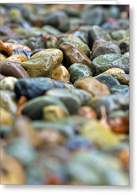 Greeting Card featuring the photograph Wet River Rock by Bob Noble Photography
